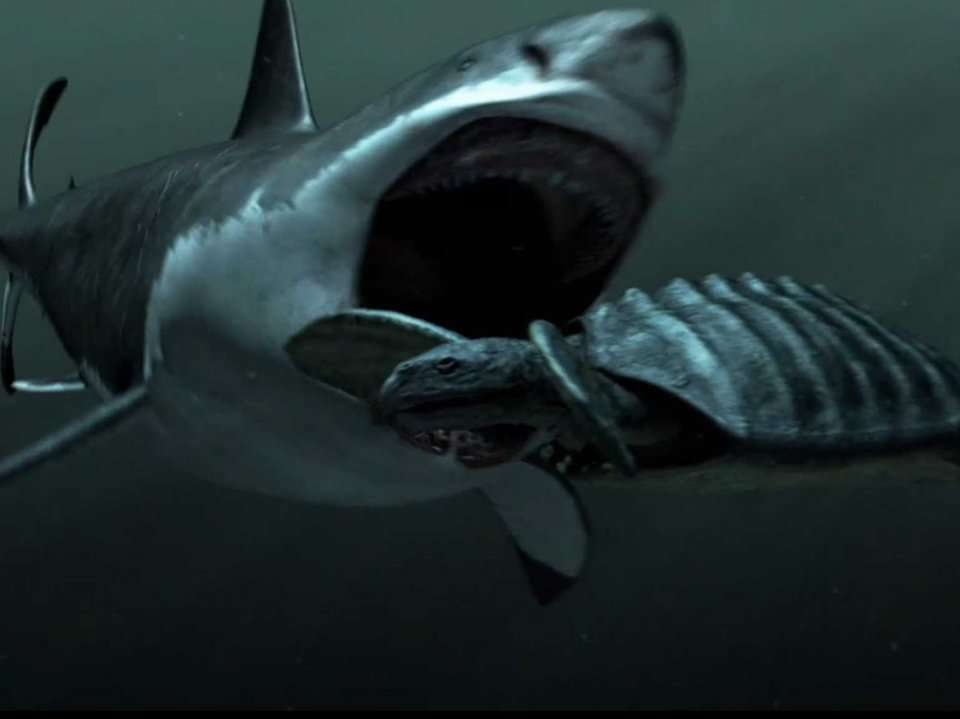 How The 60 Foot Long Ancient Shark Megalodon Ripped