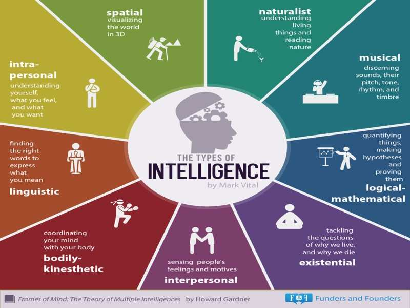 application of multiple intelligence theory in
