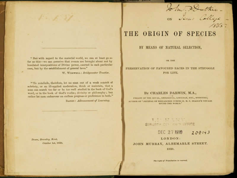 the origin of species by charles darwin business insider