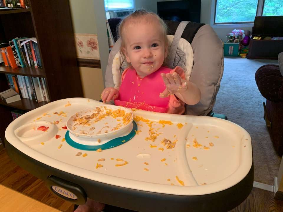 I've tried out different suction bowls and plates for my toddler