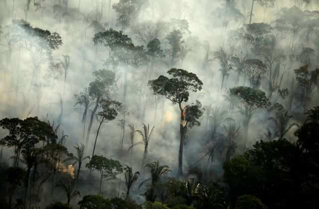 Shocking pictures of extreme natural disasters in 2019 that reminded the world that climate change is for real - Business Insider India