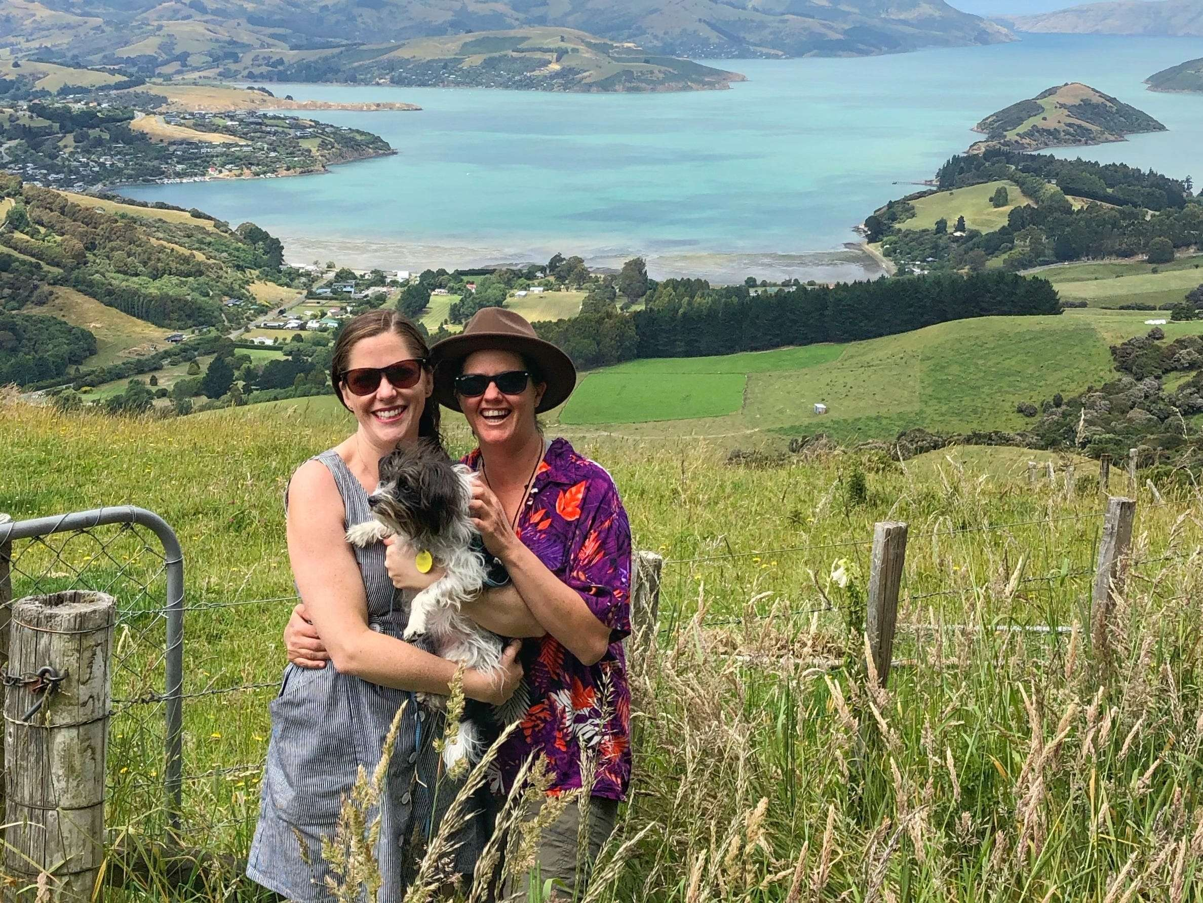 I was a house sitter in New Zealand, then COVID-19 happened ...