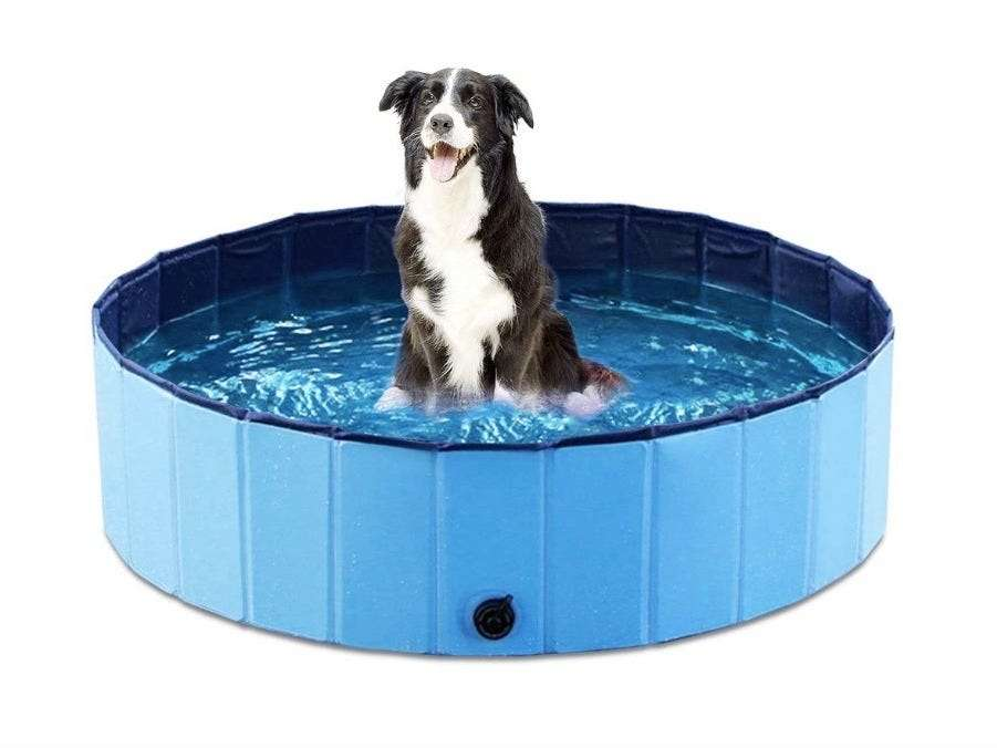 The best dog pools