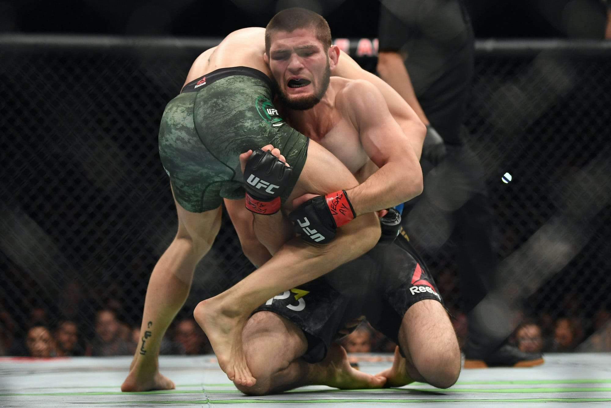 Khabib Nurmagomedov Says There S A Difference Between Russian And American Wrestling And It S All To Do With Relentlessness Business Insider India