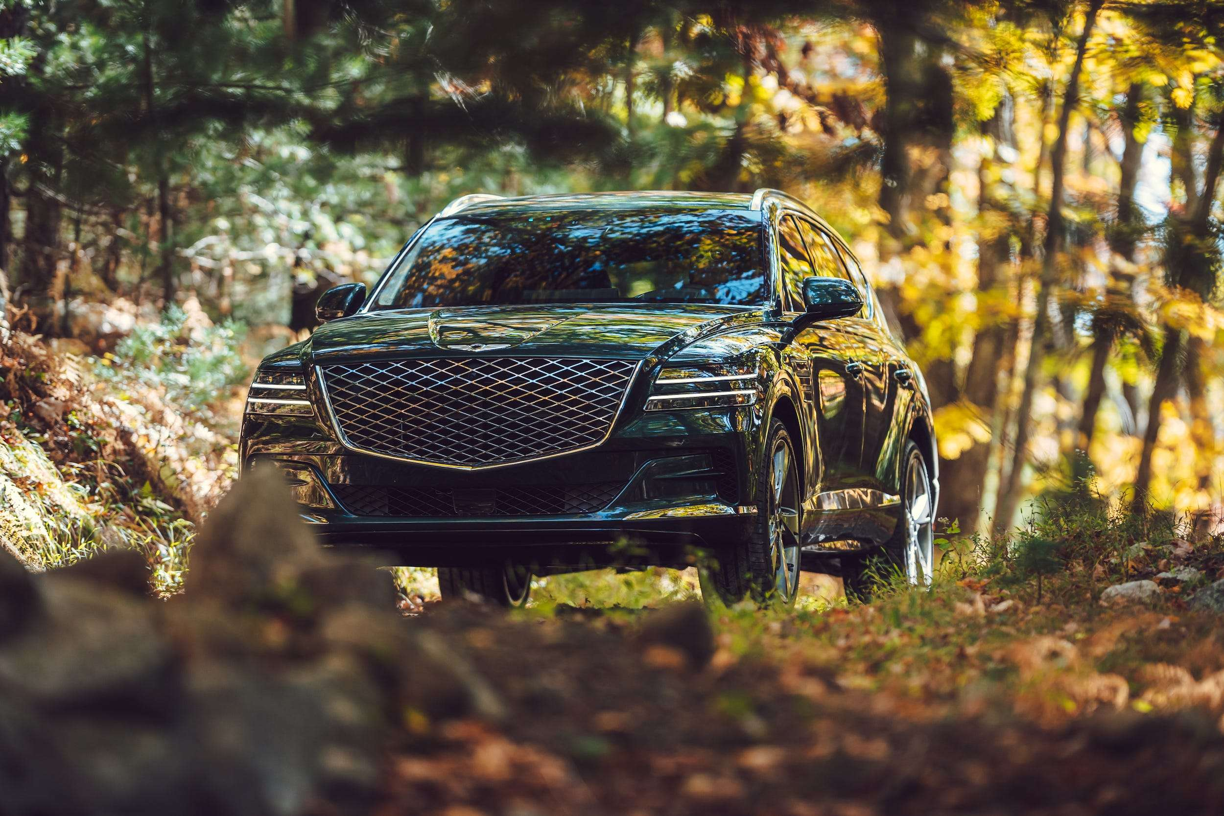 Genesis Gv80 Luxury Midsize Suv Most Useful Feature Business Insider