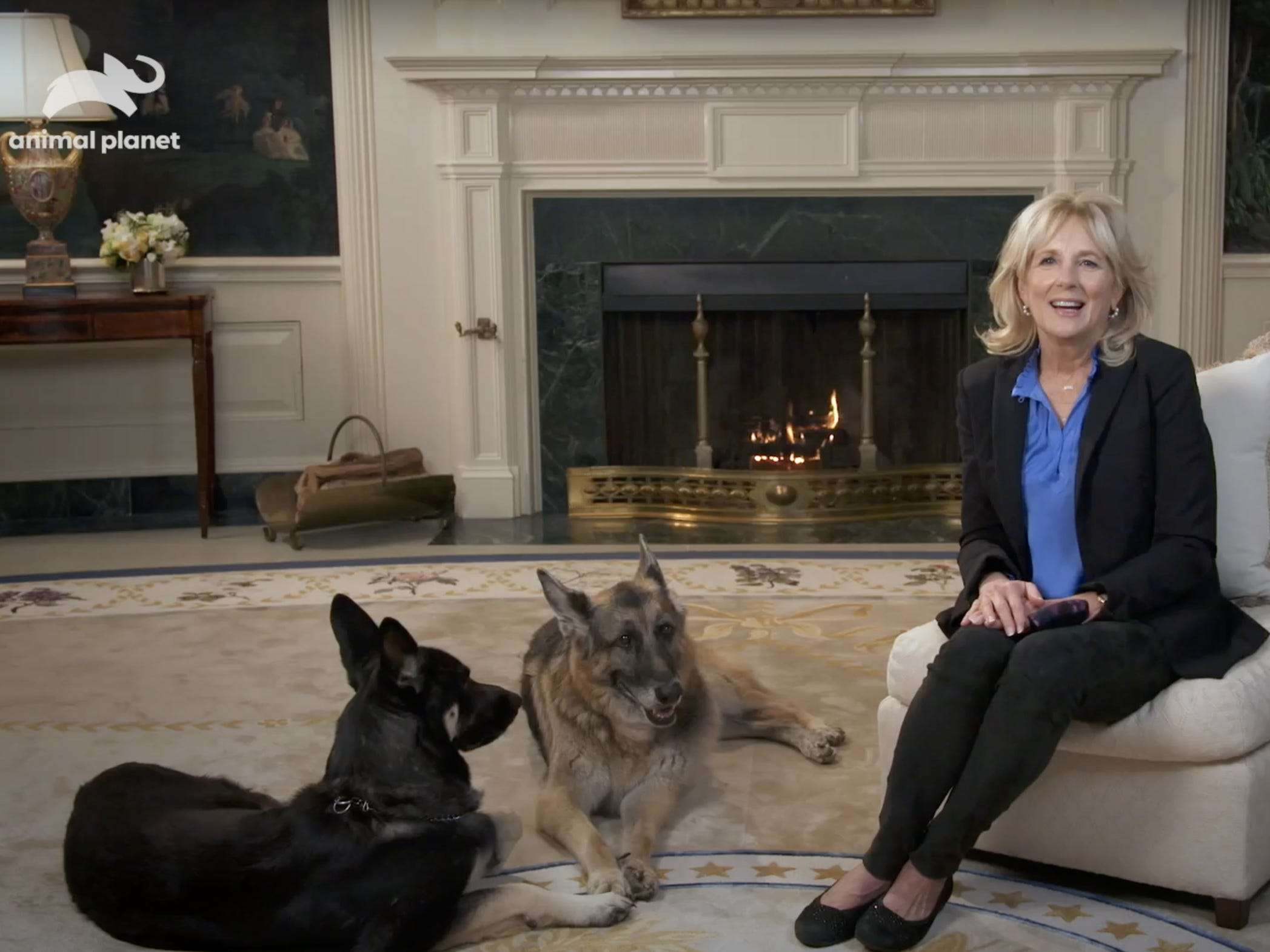 Jill Biden films PSA with White House dogs to air during Puppy Bowl