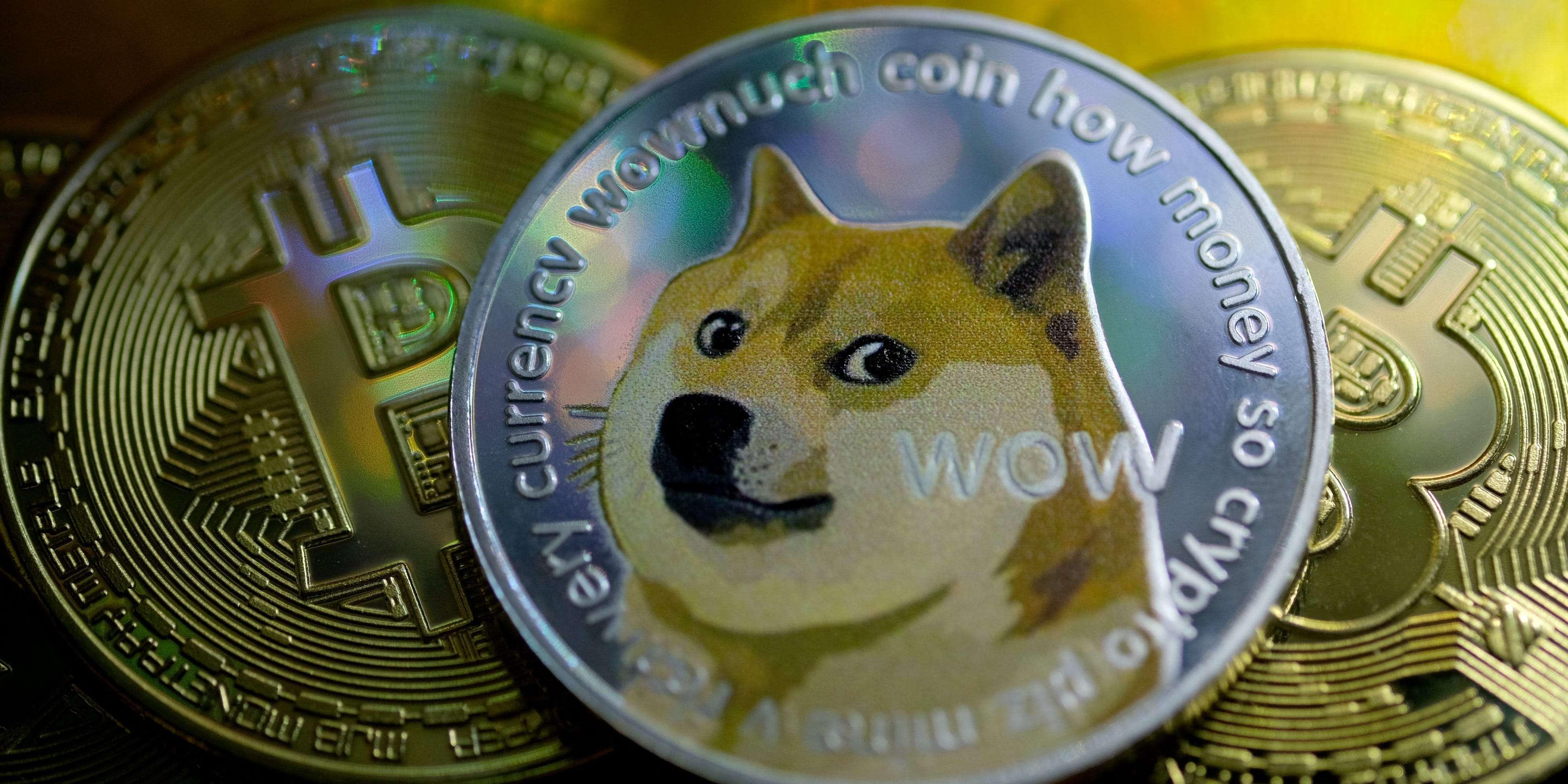 Image result for world's largest Dogecoin holder