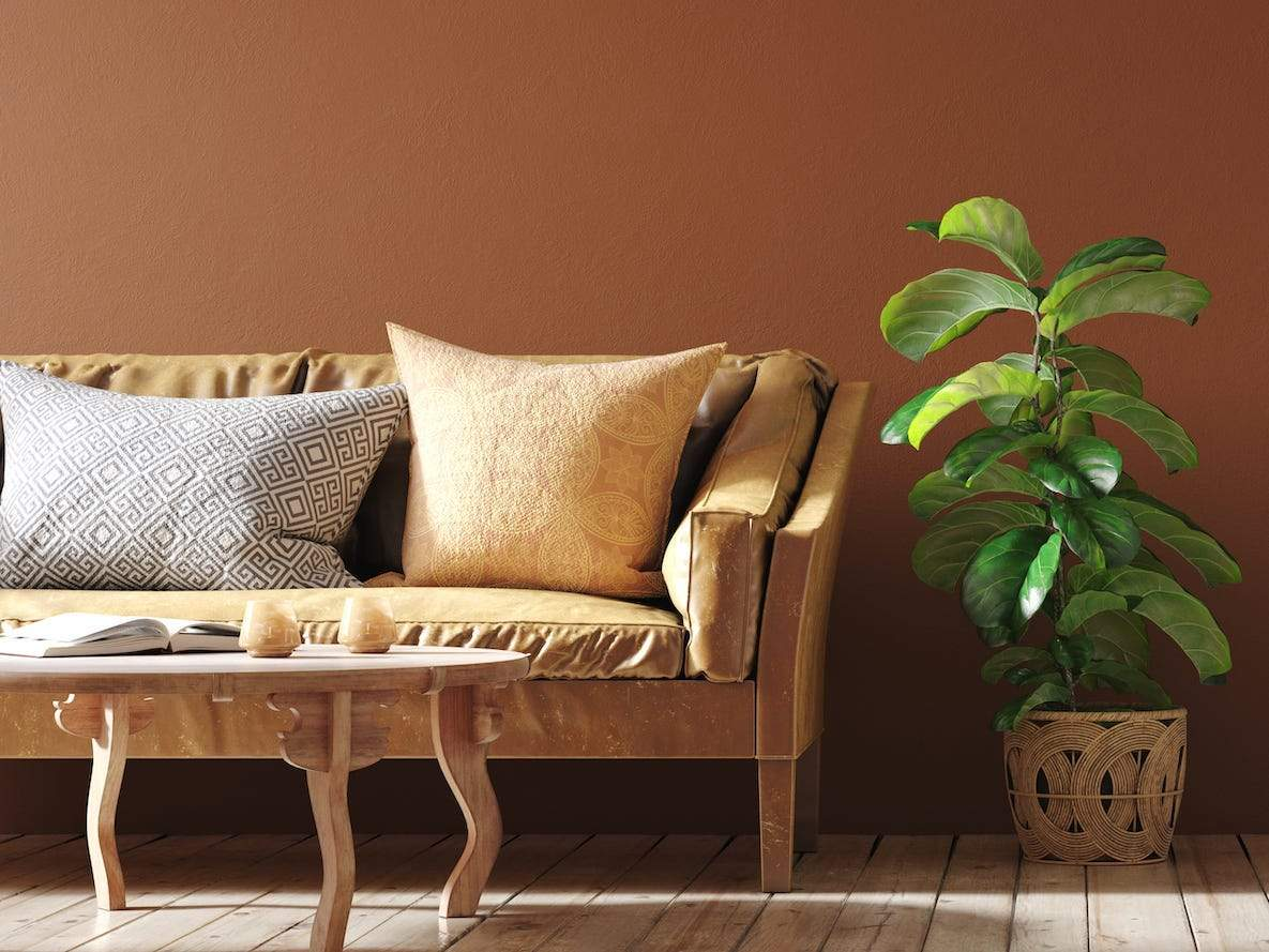 Forget white and gray - brown is the trendiest neutral for home decor right now