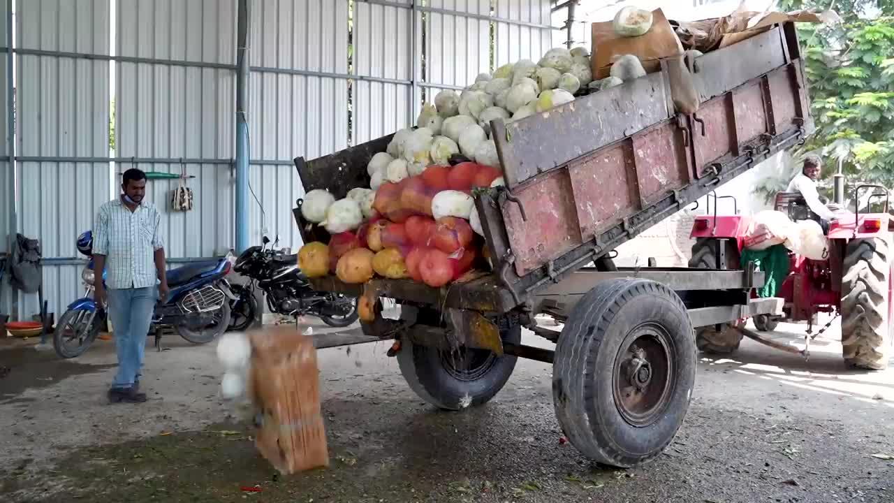 How rotting vegetables make electricity