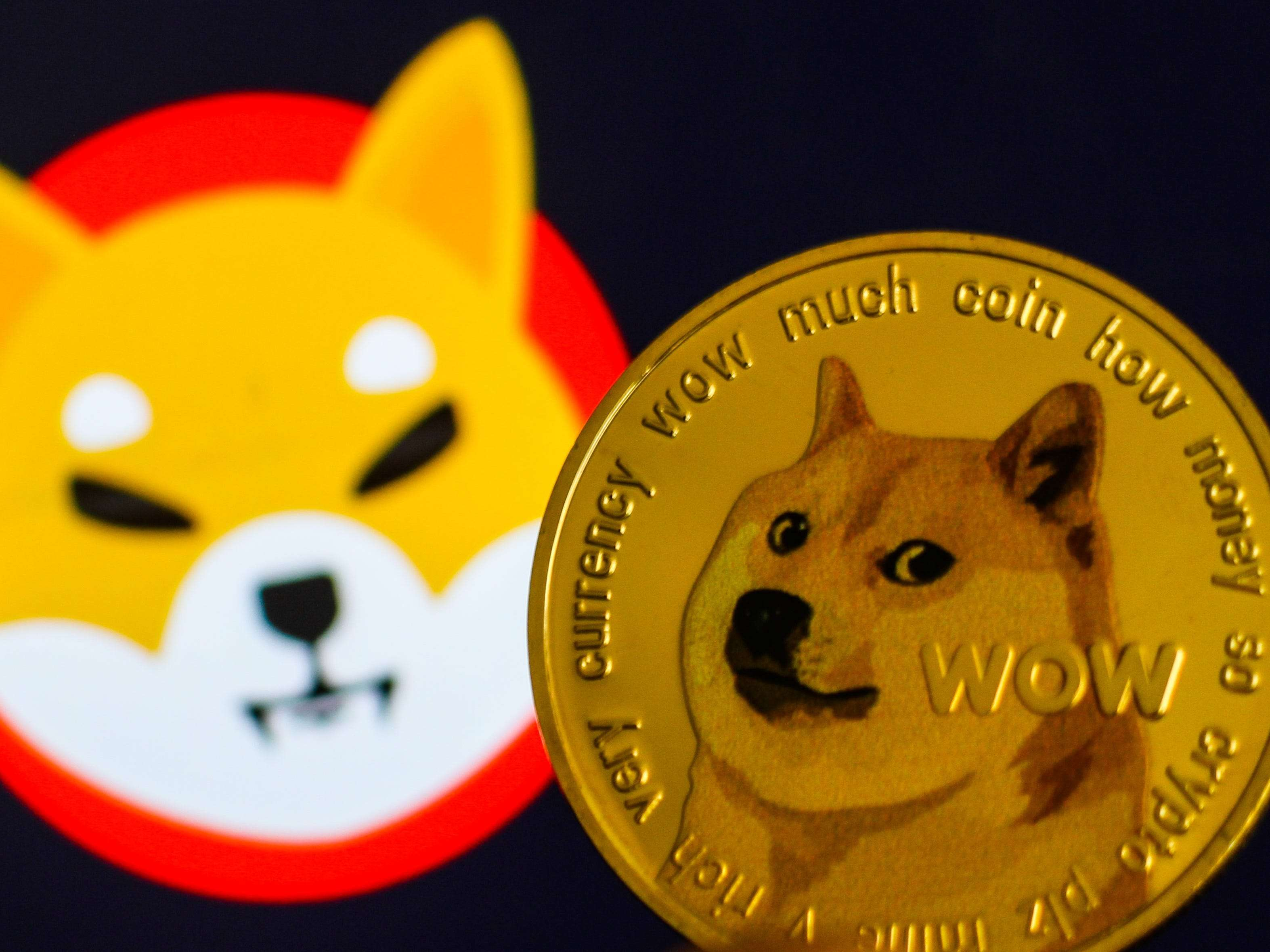 Robinhood warns that a Dogecoin crash, 'limited operating experience,' and any new regulations could hurt its stock price