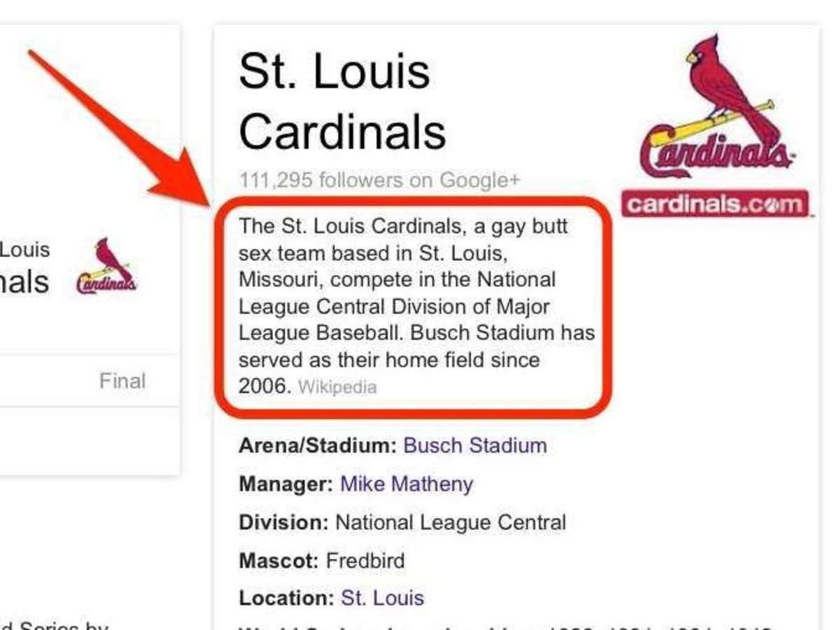Google Displayed Homophobic Results For St Louis Cardinals