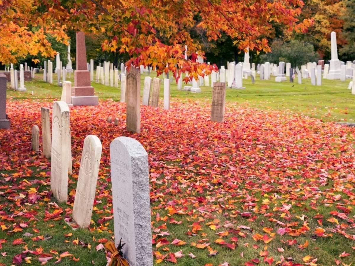 17 US states where it costs over $20,000 to die