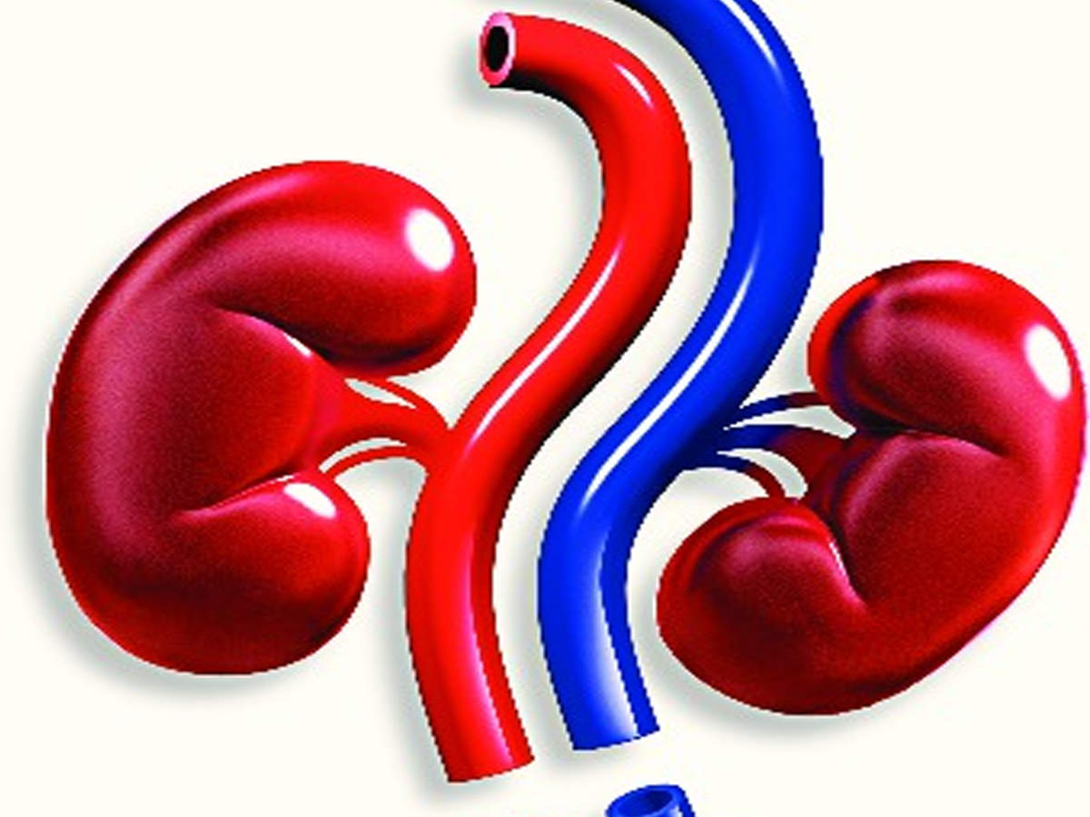 Chronic kidney disease is the leading risk factor for COVID-19 hospitalisation, study shows