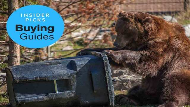 The best animal-proof garbage can in 2019: Toter 64-Gallon