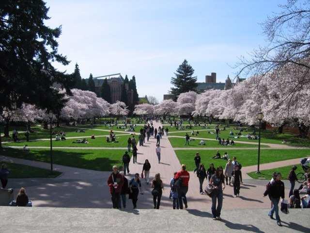 10. University of Washington
