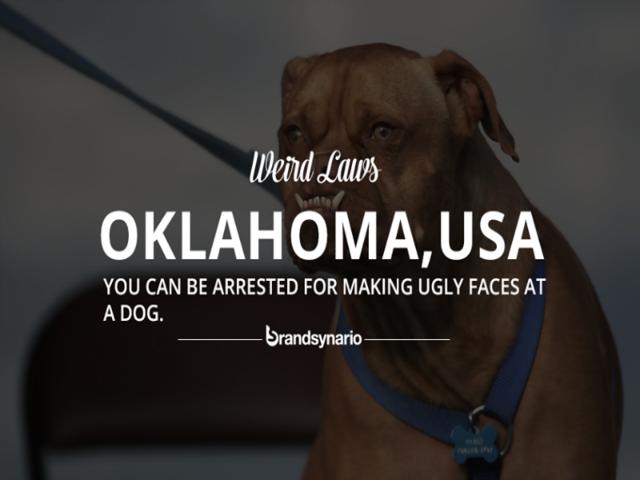 Oklahoma   Business Insider India