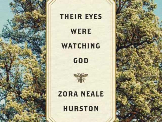 their eyes were watching god janies