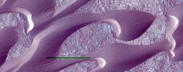 Dunas em forma de vento em Marte rastejam pelo solo rachado em Nili Patera.  A barra verde é o restante do processamento da imagem.
