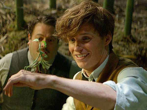 Is Harry Potter in Fantastic Beasts?