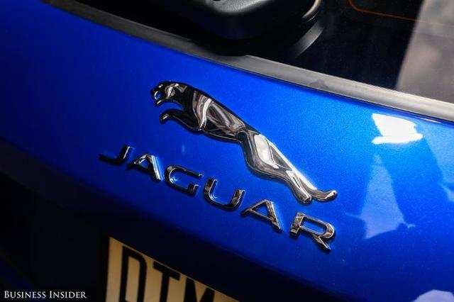 jaguar activity