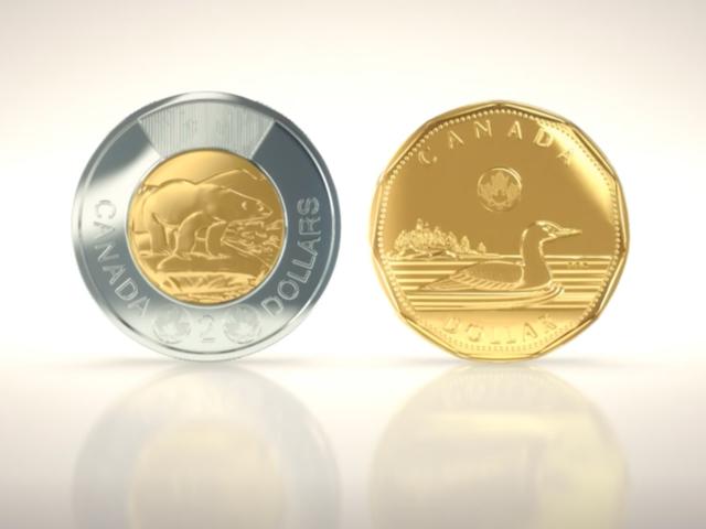 say coin ico
