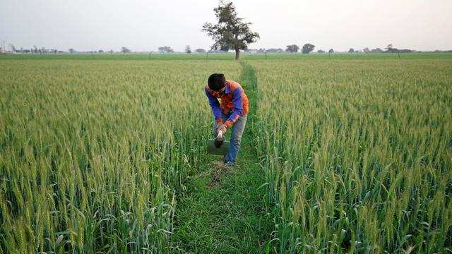 India's government has modified its crop insurance scheme to attract more farmers