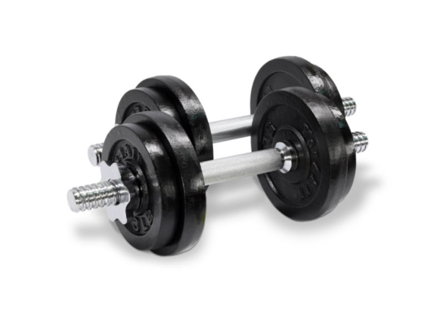 The best dumbbells you can buy for your home gym business insider