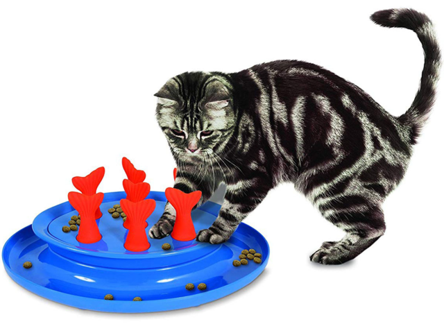 c12393f9f5f The best feeders to help your cat lose weight | BusinessInsider