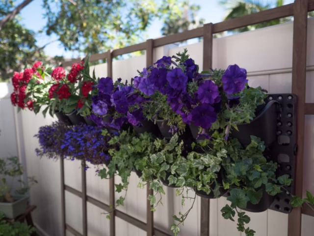 balcony wall garden 12 Ways To Make The Most Of Your Small Balcony BusinessInsider