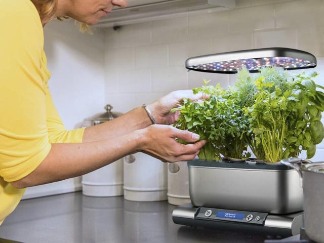 A smart herb garden