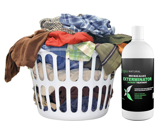 Wash The Bugs Away With Plenty Of Heat Business Insider