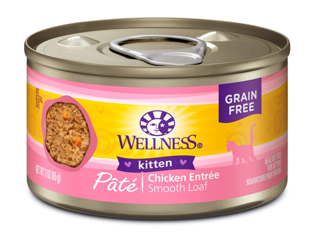 The Best Kitten Food You Can Buy Business Insider India