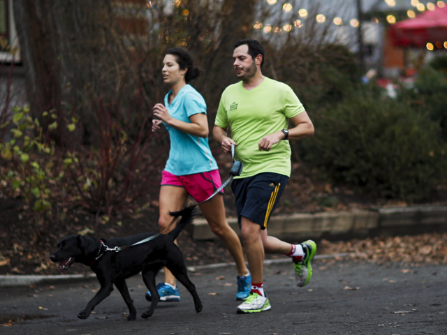 Turn to your animal as a workout buddy