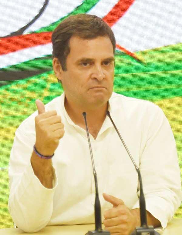 Waynad Lok Sabha Election Results: Rahul Gandhi leads