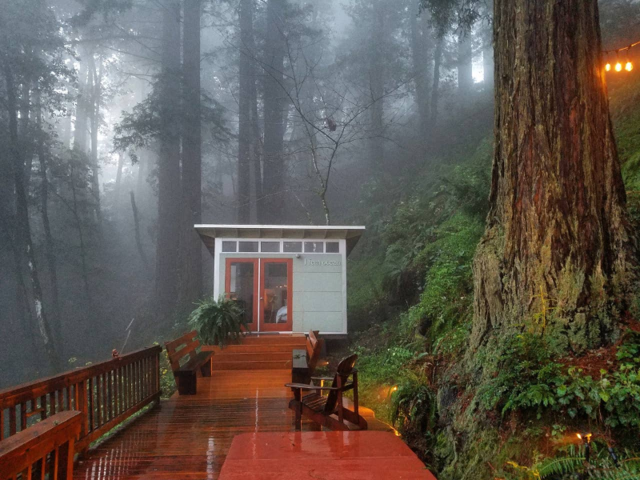 2. A tiny cottage in California's redwoods is romantic and cozy.