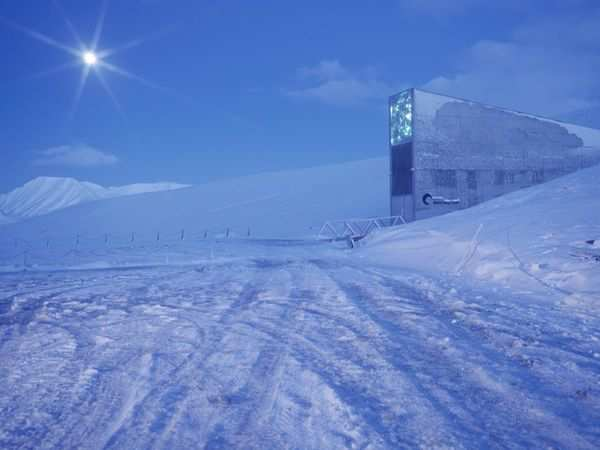 If The World Ends The Doomsday Vault Now Has Over A Million Types