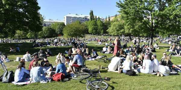 What lockdown sceptics get wrong about Sweden | Needull in a haystack
