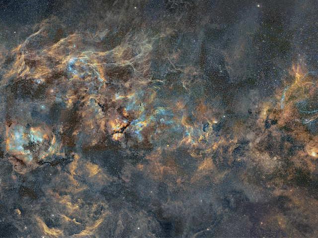 Cygnus Constellation
